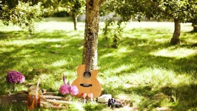 gitar sosyoloji
